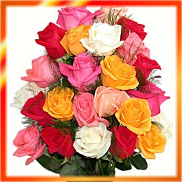 गुलाफका फूलहरू