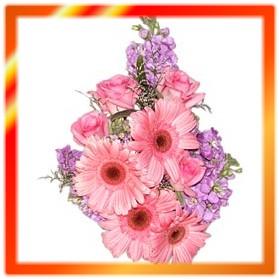 गुलाफी फूलहरू