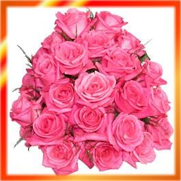 गुलाफहरू