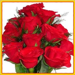Red Rose रातो गुलाफहरू